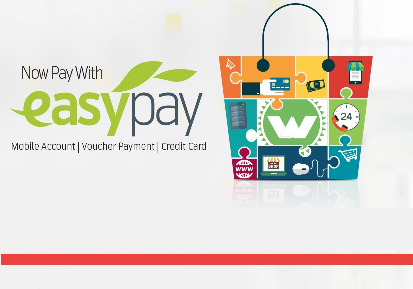 Now Accepting Credit Cards / Mobile Payments through EasyPay.